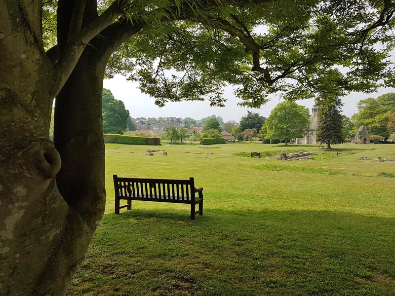 abbey grounds 3